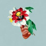 Kingdoms In Colour (ターコイズ・カラーヴァイナル仕様/180グラム重量盤レコード)