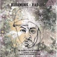 Budamunk×Radius 7インチが日本向けジャケで限定再発