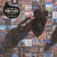 Best Of Pink Floyd: A Foot In The Door (2枚組/180グラム重量盤レコード)