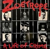 Life At Crime