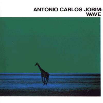 Wave: 波