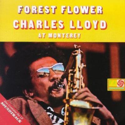 Forest Flower / Soundtrack