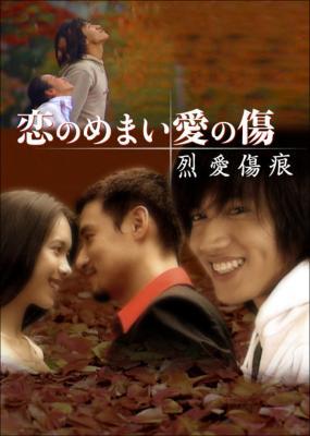 恋のめまい愛の傷 烈愛傷痕 DVD-BOX