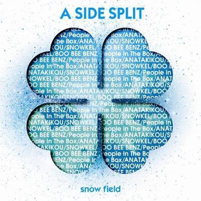 A SIDE SPLIT Vol.3 〜snow field〜