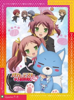 バカとテストと召喚獣にっ! 第4巻【DVD】