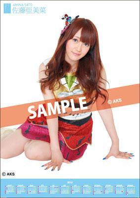 Amina Sato / 2012 Poster Type Calendar