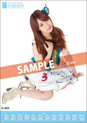 Natsuki Sato / 2012 Poster Type Calendar