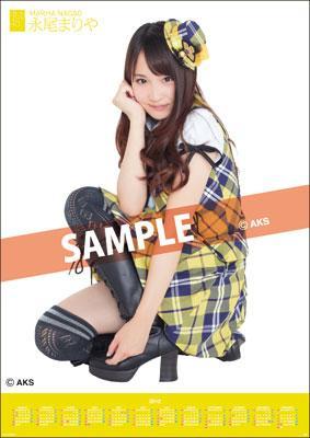 Mariya Nagao / 2012 Poster Type Calendar