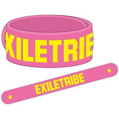(受付終了)ゴムブレス ピンク: Exile Tribe Live Tour 2012 Tower Of Wish
