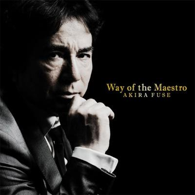 Way of the Maestro