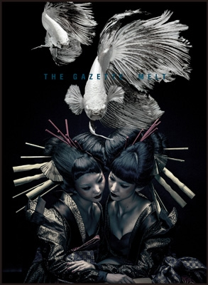 the GazettE live tour 12-13[DIVISION]FINAL MELT LIVE AT 03.10 SAITAMA SUPER ARENA 【初回限定盤】