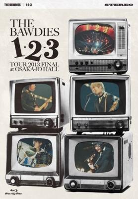 1-2-3 TOUR 2013 FINAL at 大阪城ホール 【初回限定盤 : 106Pフォトブック付 特製ブックケース仕様】(Blu-ray)