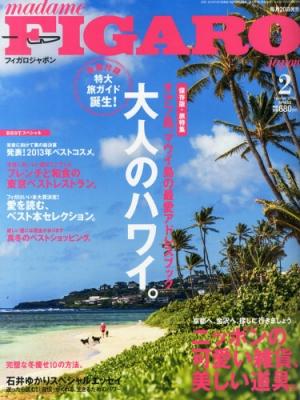 Madame Figaro Japon (フィガロ ジャポン)2014年 2月号