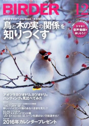Birder (バーダー)2015年 12月号
