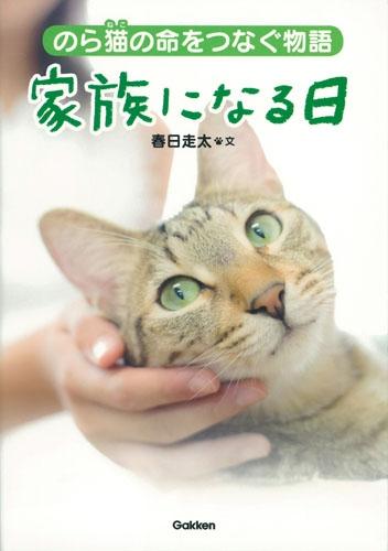 のら猫の命をつなぐ物語 家族になる日 動物感動ノンフィクション