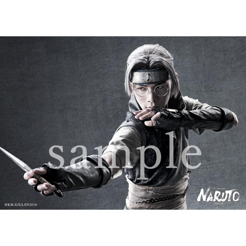 ブロマイド 2枚セット(薬師カブト)/ ライブ・スペクタクル「NARUTO-ナルト-」ワールドツアー