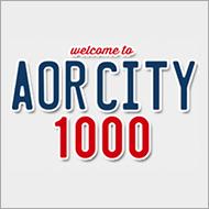 �\�j�[ AOR�a��40��N�uAOR CITY 1000�v