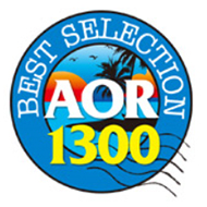 ���[�i�[ AOR BEST SELECTION 1300 [��2��]
