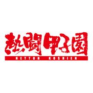 『熱闘甲子園2017 第99回大会』DVD、11月15日発売