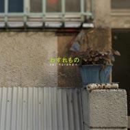 rei harakamiの『わすれもの』が2LP見開きジャケ仕様の豪華盤で発売決定