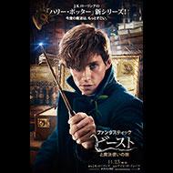 先着購入者特典付き『ファンタスティック・ビーストと魔法使いの旅』ブルーレイ・DVD発売中