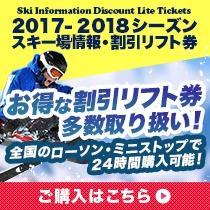 スキーリフト券