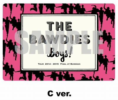 THE BAWDIES マグネットシート(C ver.)