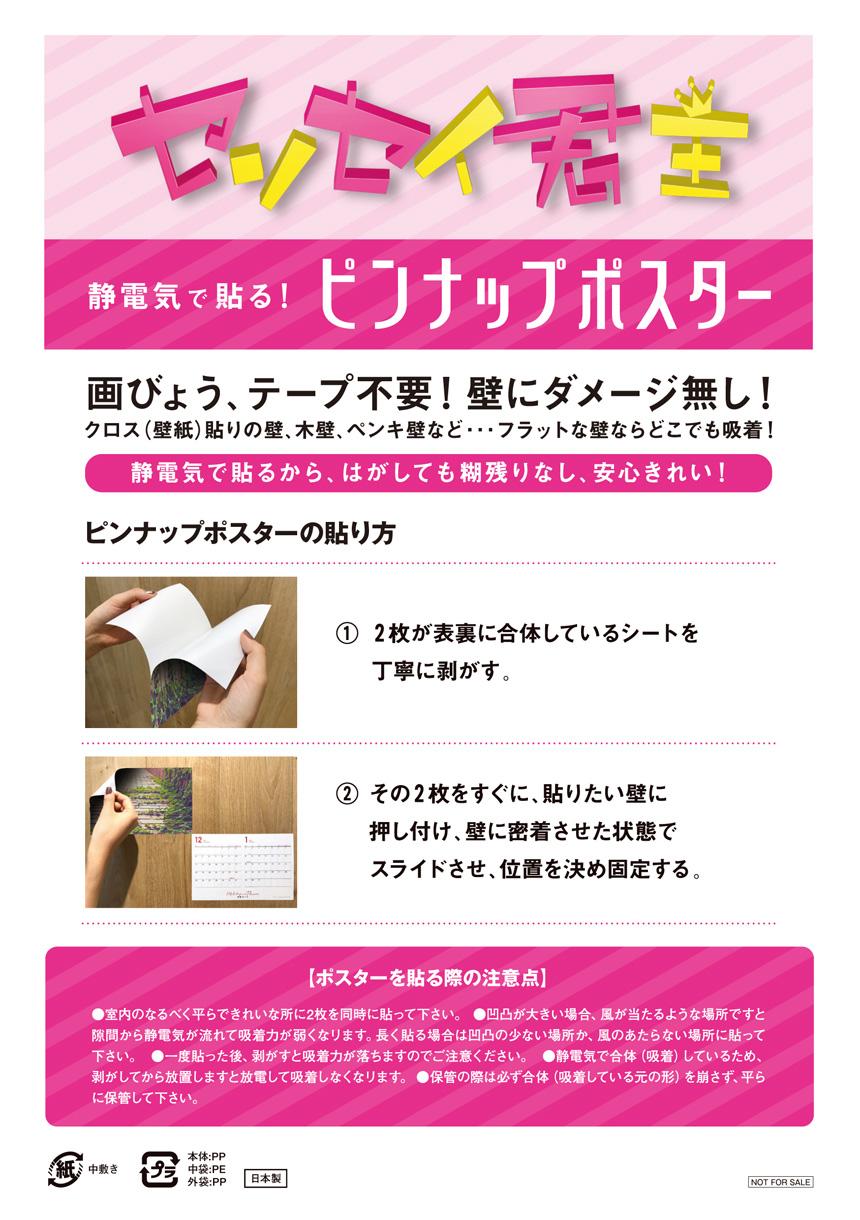 【HMVオリジナル特典】ピンナップポスター説明書
