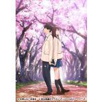 劇場アニメ『君の膵臓をたべたい』Blu-ray&DVD発売