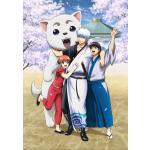 『銀魂 銀祭り 2019(仮)』Blu-ray&DVD発売決定