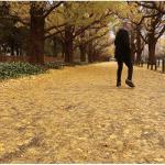 佐野元春 8曲入り最新作『或る秋の日』が180g重量盤LPで発売