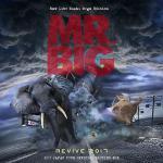 MR.BIG の2017年ジャパンツアー9公演をCD18枚に収録した限...