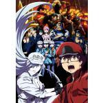 【特典つき】TVアニメ『はたらく細胞BLACK』Blu-ray&DVD...