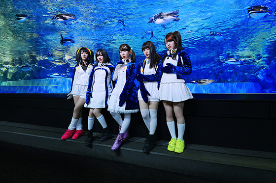 """PPP(Penguins Performance Project""""ペパプ"""")"""