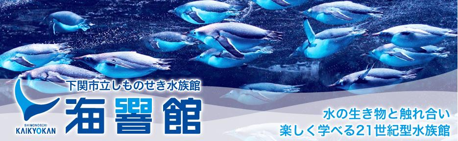 海響館(下関市立しものせき水族館)※発券日から1ヶ月間有効