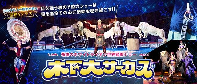 奇跡のホワイトライオン世界猛獣ショー☆木下大サーカス