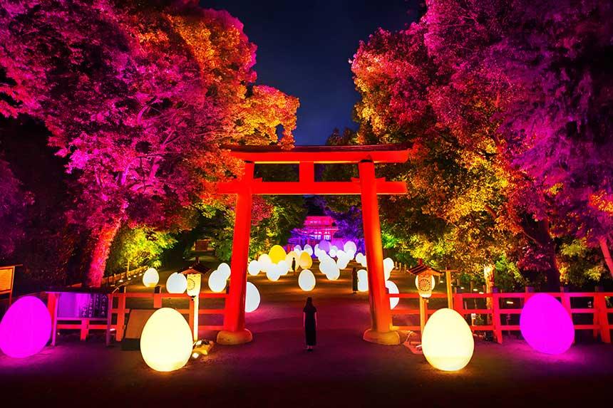下鴨神社 糺の森の光の祭 Art by TeamLab - TOKIO インカラミ