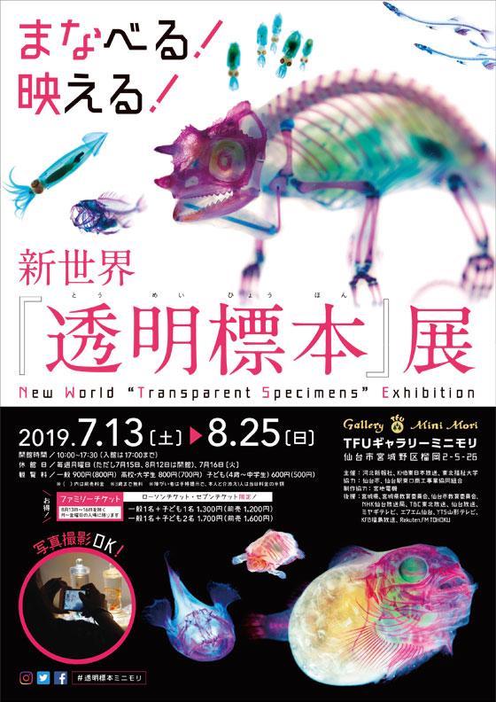 新世界『透明標本』展