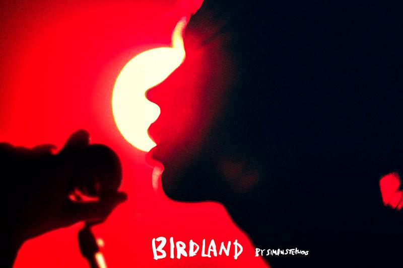 パルコ・プロデュース公演2021『Birdland』