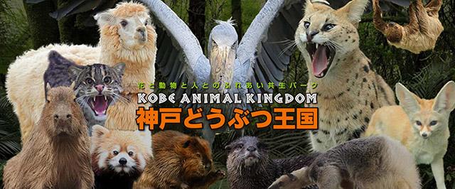 神戸どうぶつ王国 ※有効期限:発券日~3ヶ月間