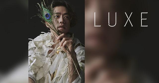 LUXE(リュクス)[配信]完全編集版