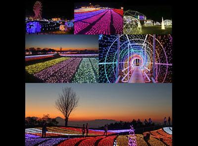マザー牧場イルミネーション『光の花園』