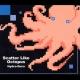 Scatter Like Octopus