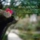 京都のイリーナ・メジューエワ〜ライヴ録音集2007−2012(5CD)