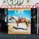 LIFE (+LIVE CD)【初回限定盤】