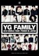 YG FAMILY WORLD TOUR 2014 -POWER-in Japan (3DVD)
