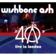 40th Anniversary Concert: Live In London (+DVD)