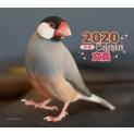 2020年 ミニ判カレンダー 文鳥