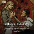 クレルヴォ交響曲 ハンヌ・リントゥ&フィンランド放送交響楽団、ヴィッレ・ルサネン、他