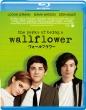 ウォールフラワー【Blu-ray】